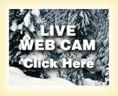 View Web Cam at Rustic Manor